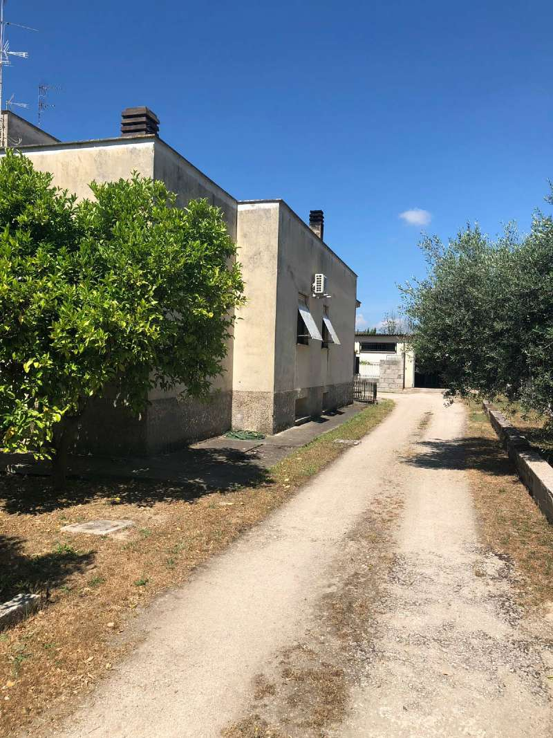 Ampio appartamento con piccolo giardino e garage, foto 17