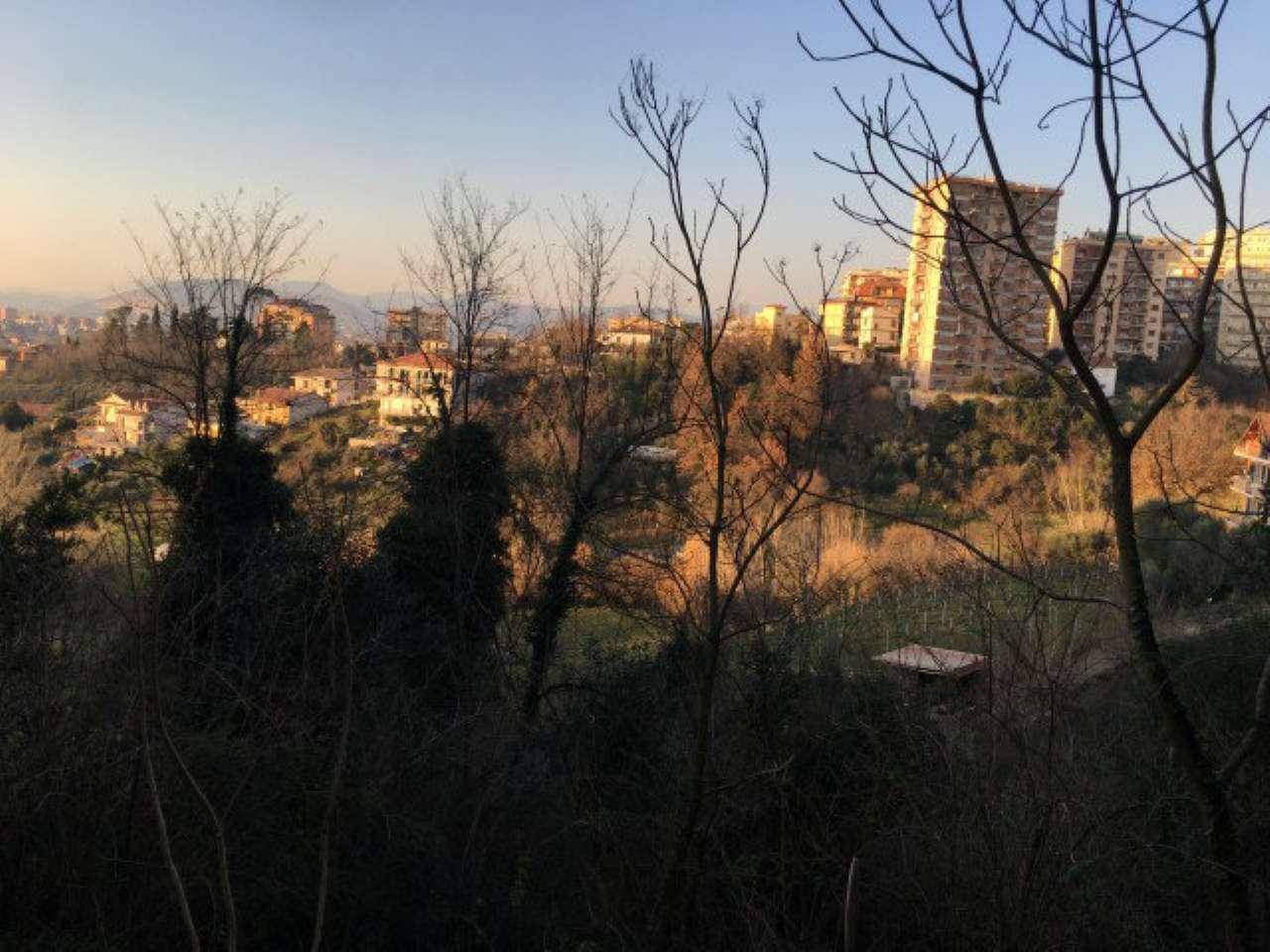 Trilocale, Viale America Latina, Frosinone, foto 13