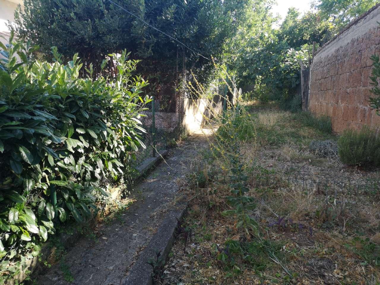 Via Cassia la Botte, Vetralla, foto 17