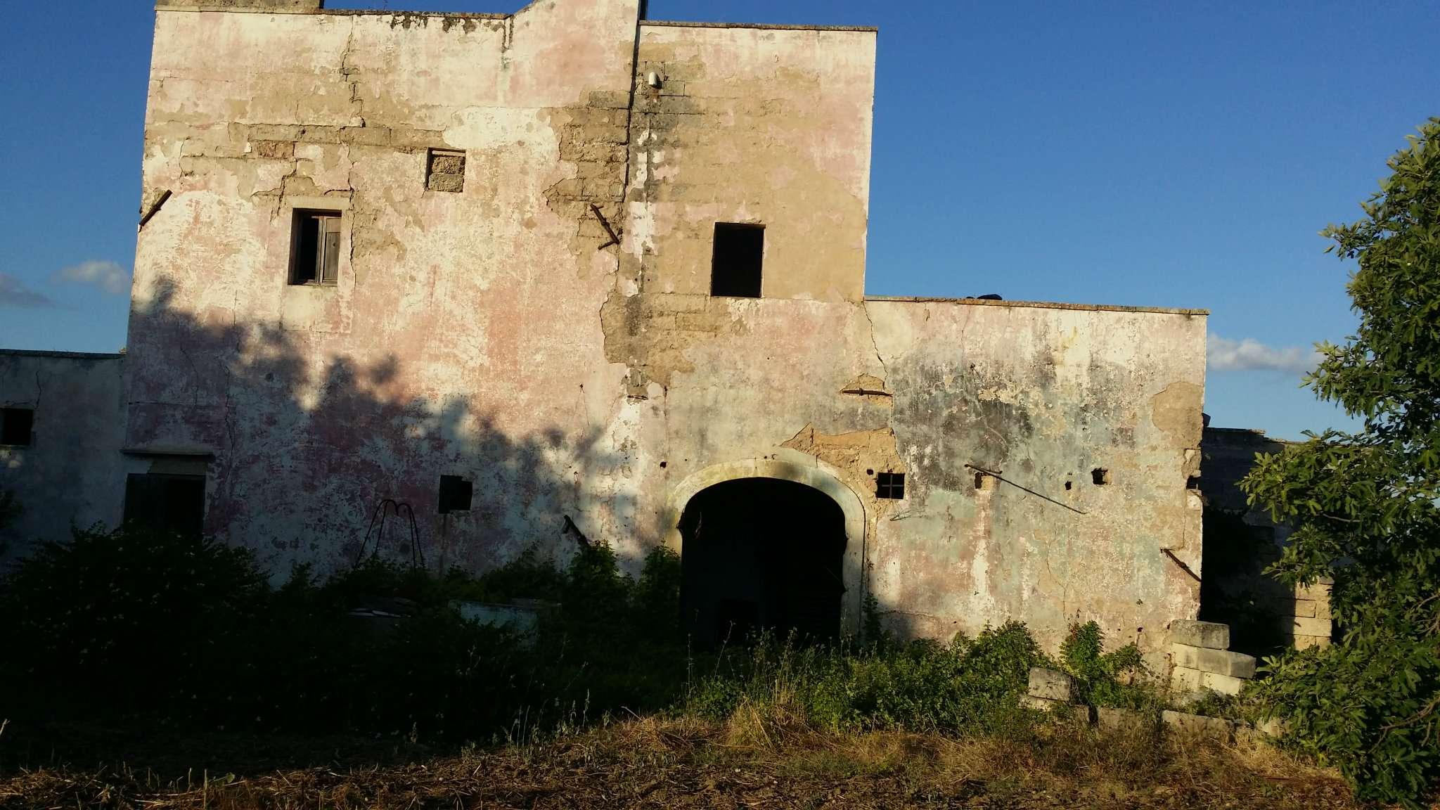 Foto 7 di Casa Colonica contrada Paduli, Cutrofiano