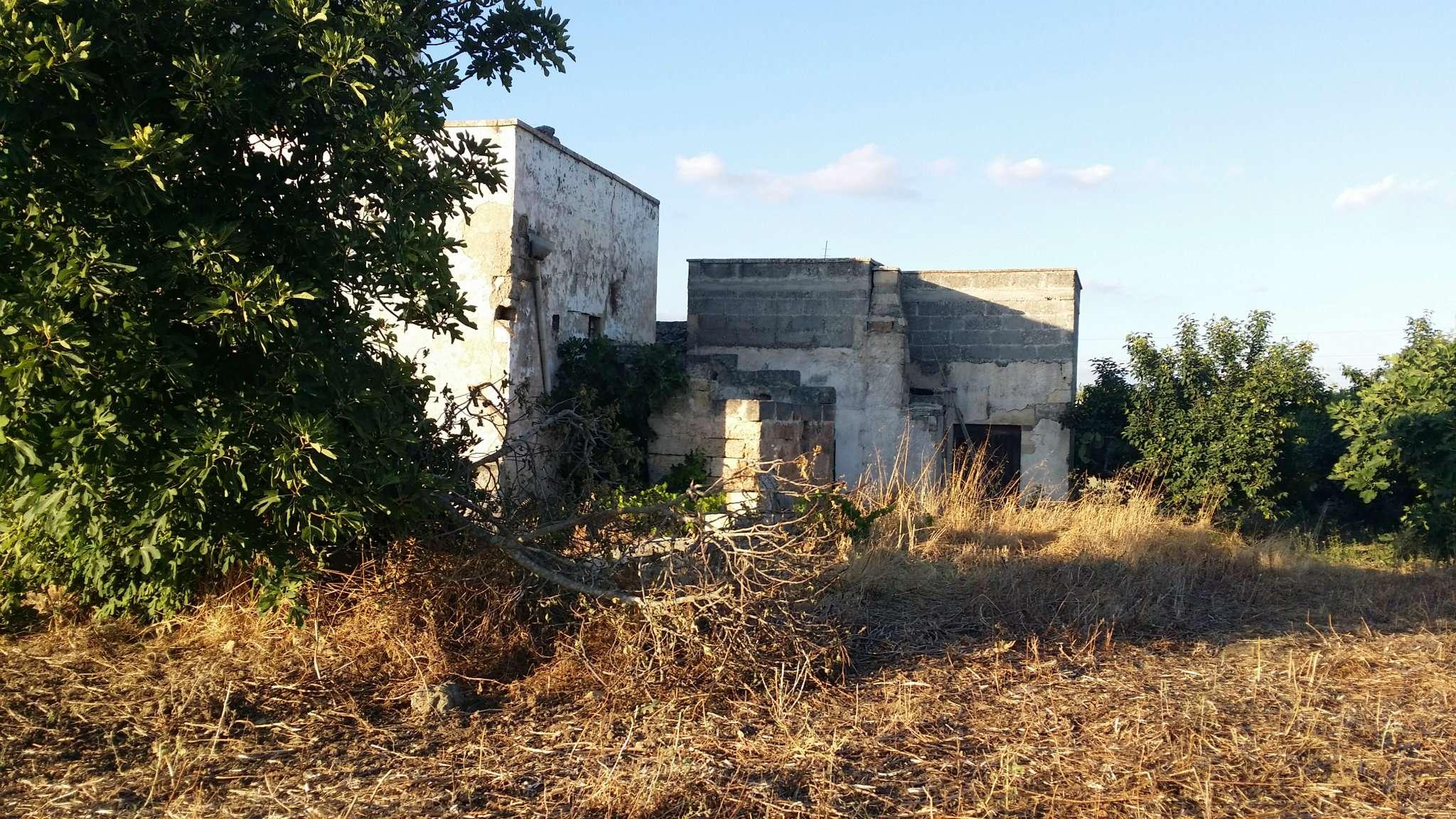 Foto 10 di Casa Colonica contrada Paduli, Cutrofiano