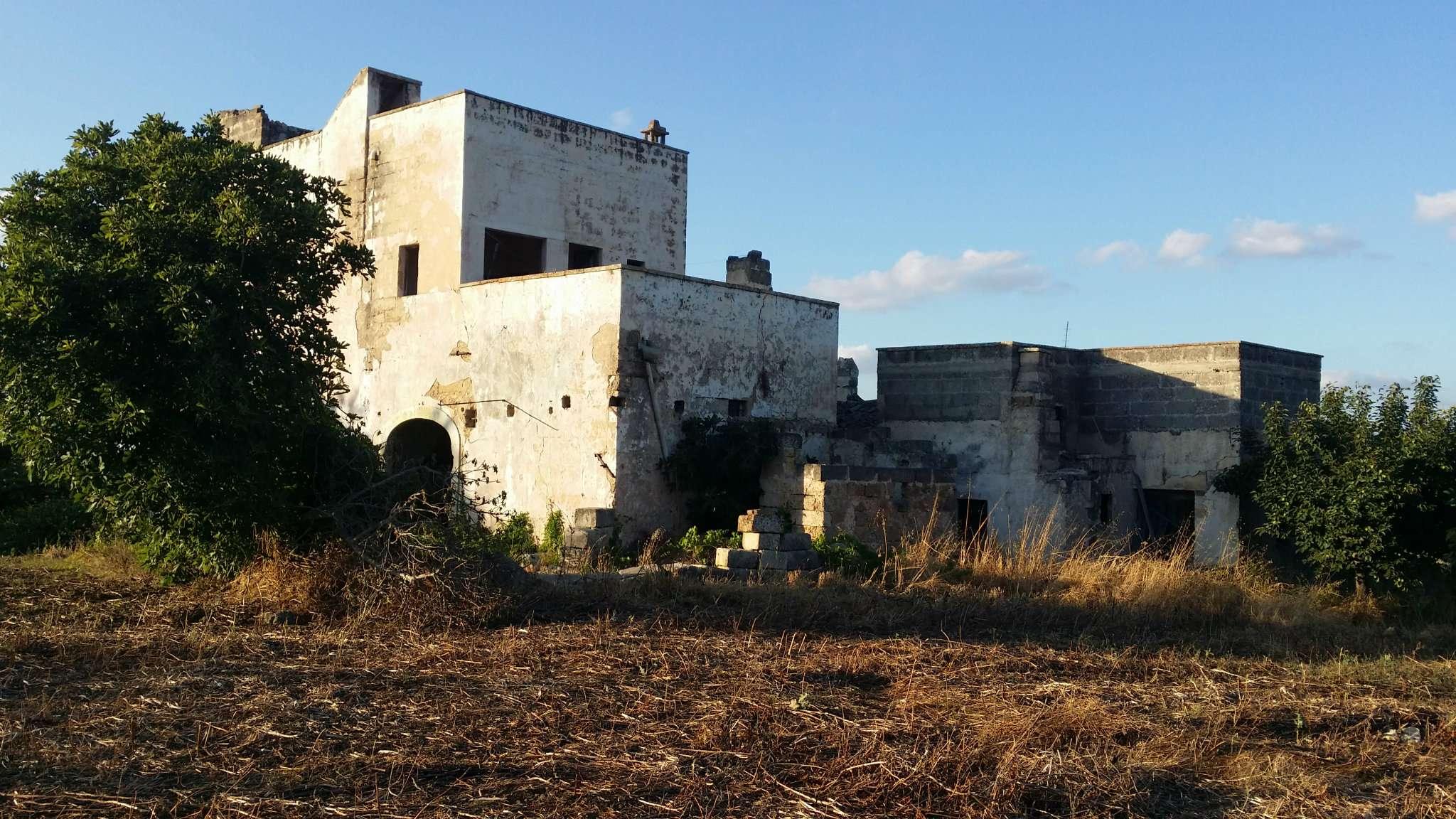 Foto 3 di Casa Colonica contrada Paduli, Cutrofiano