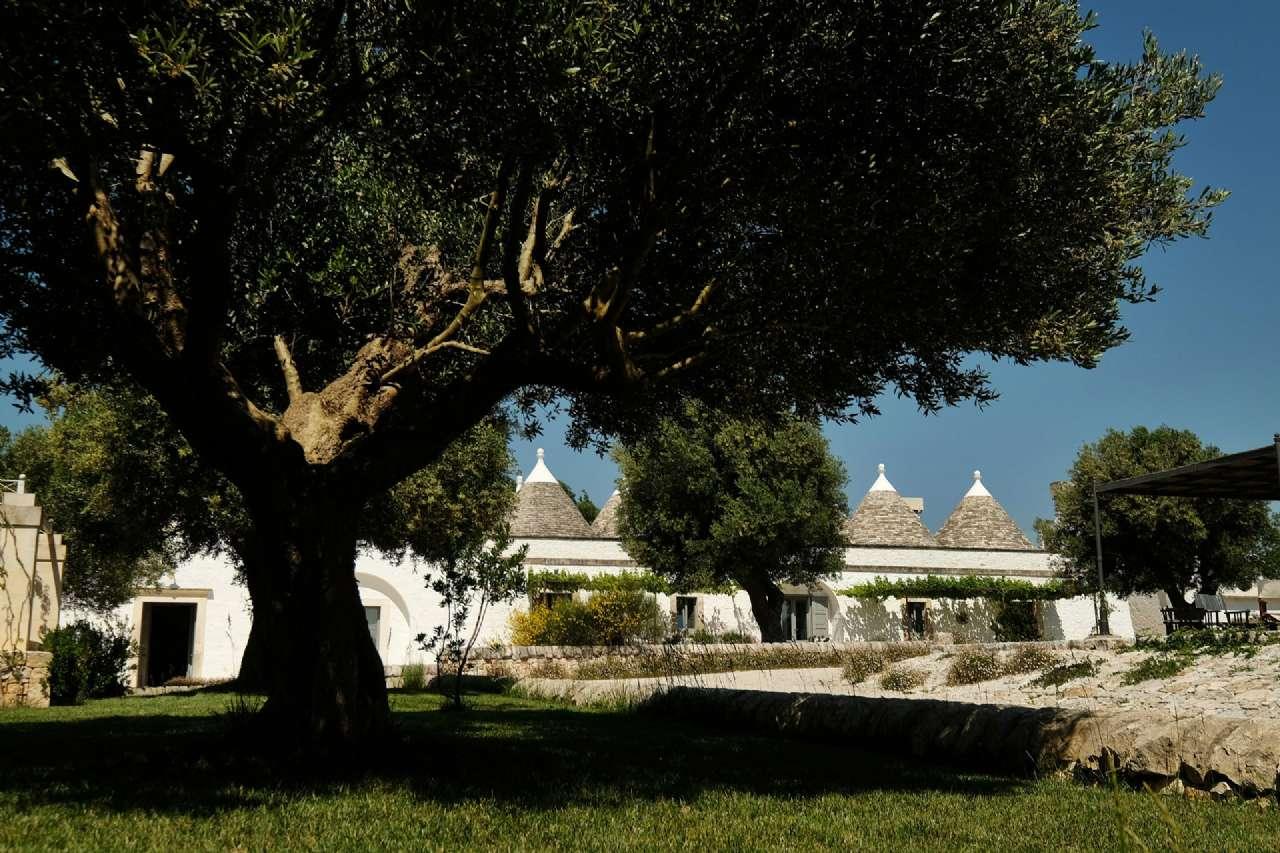 Antica masseria con destinazione alberghiera dotata di piscina