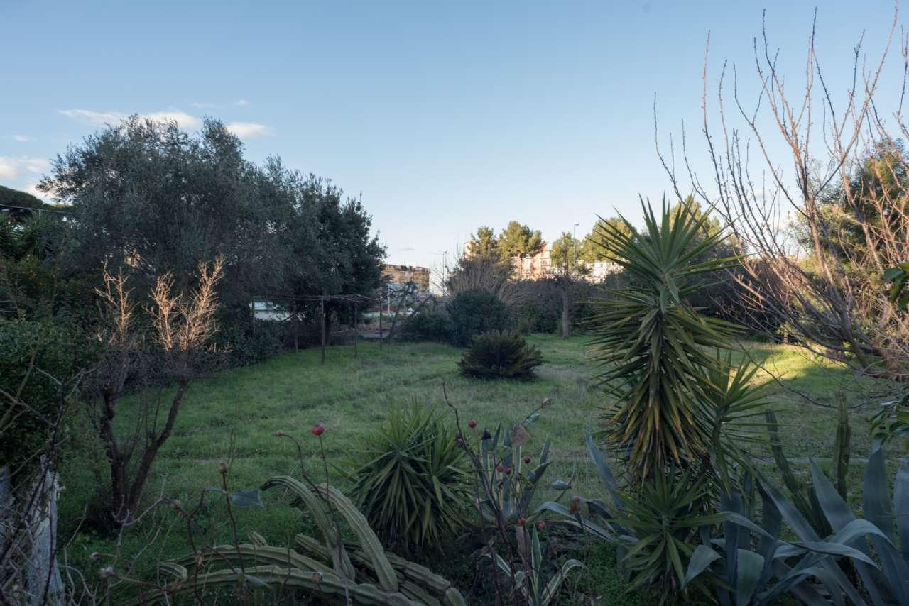 Vomero - Villa con giardino, foto 1