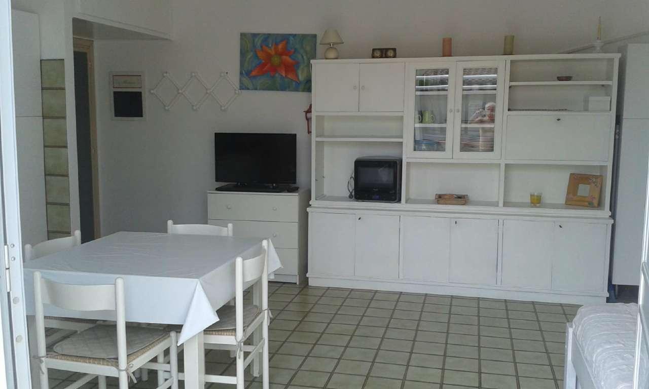 Appartamento in ottime condizioni arredato in vendita Rif. 9197522