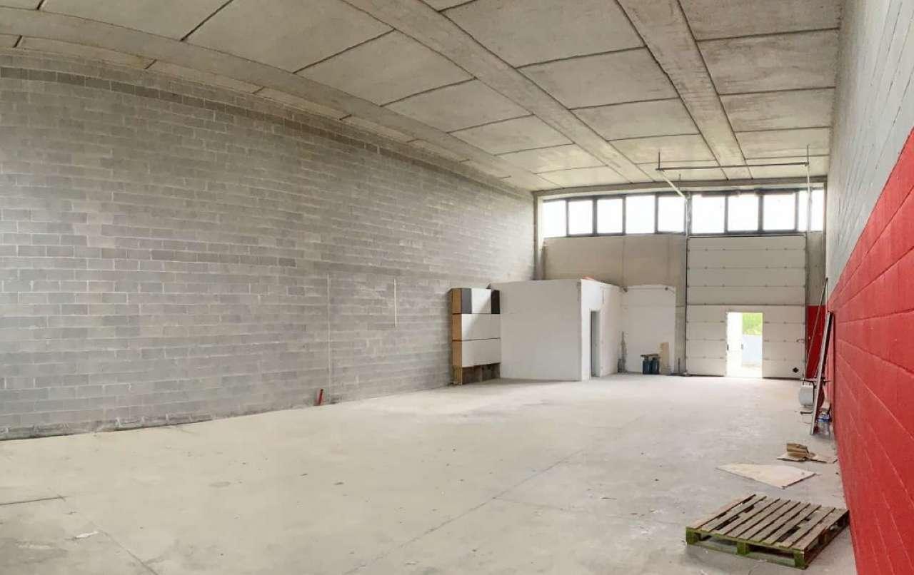 Capannone industriale, Via Cagliari, Ponsacco, foto 6