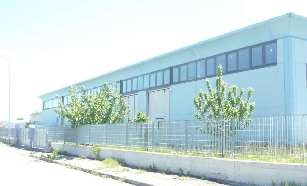 Capannone industriale, Via Cagliari, Ponsacco, foto 2